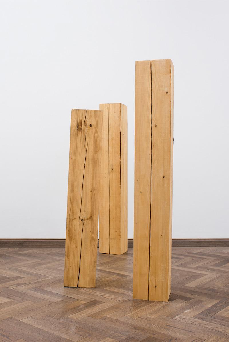 Maeva Rosset «Dummes Holz»    Institut Kunst, Master 2016