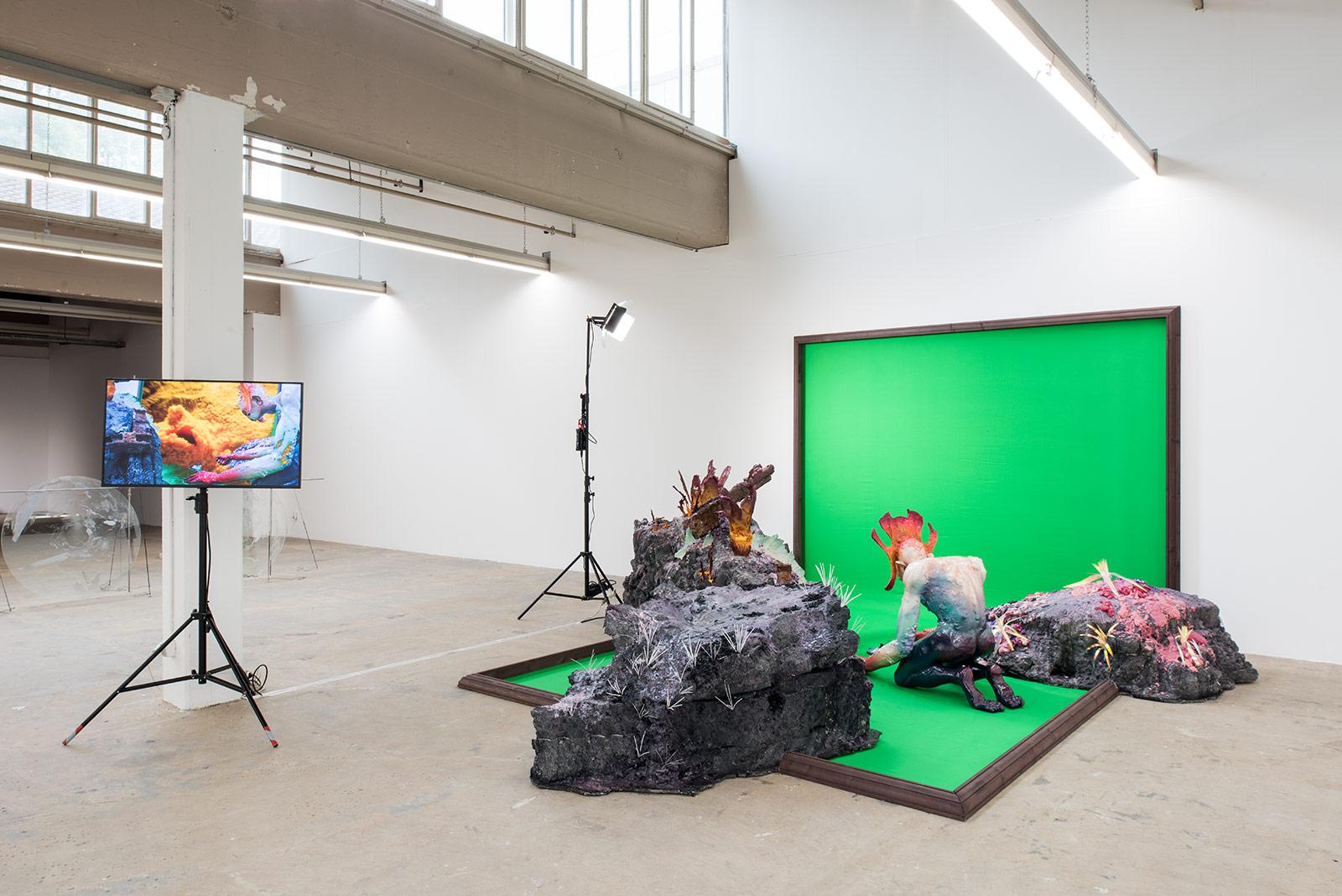 Manuel Guldimann – Institut Kunst, Diplom 2017