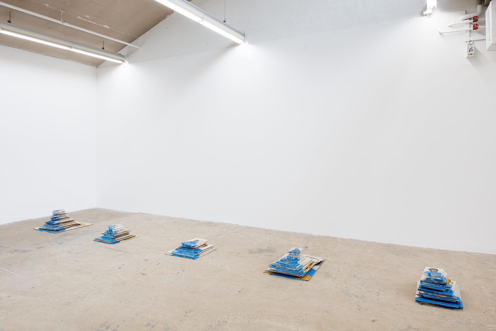 Raphael Reichert – Institut Kunst, Diplom 2017