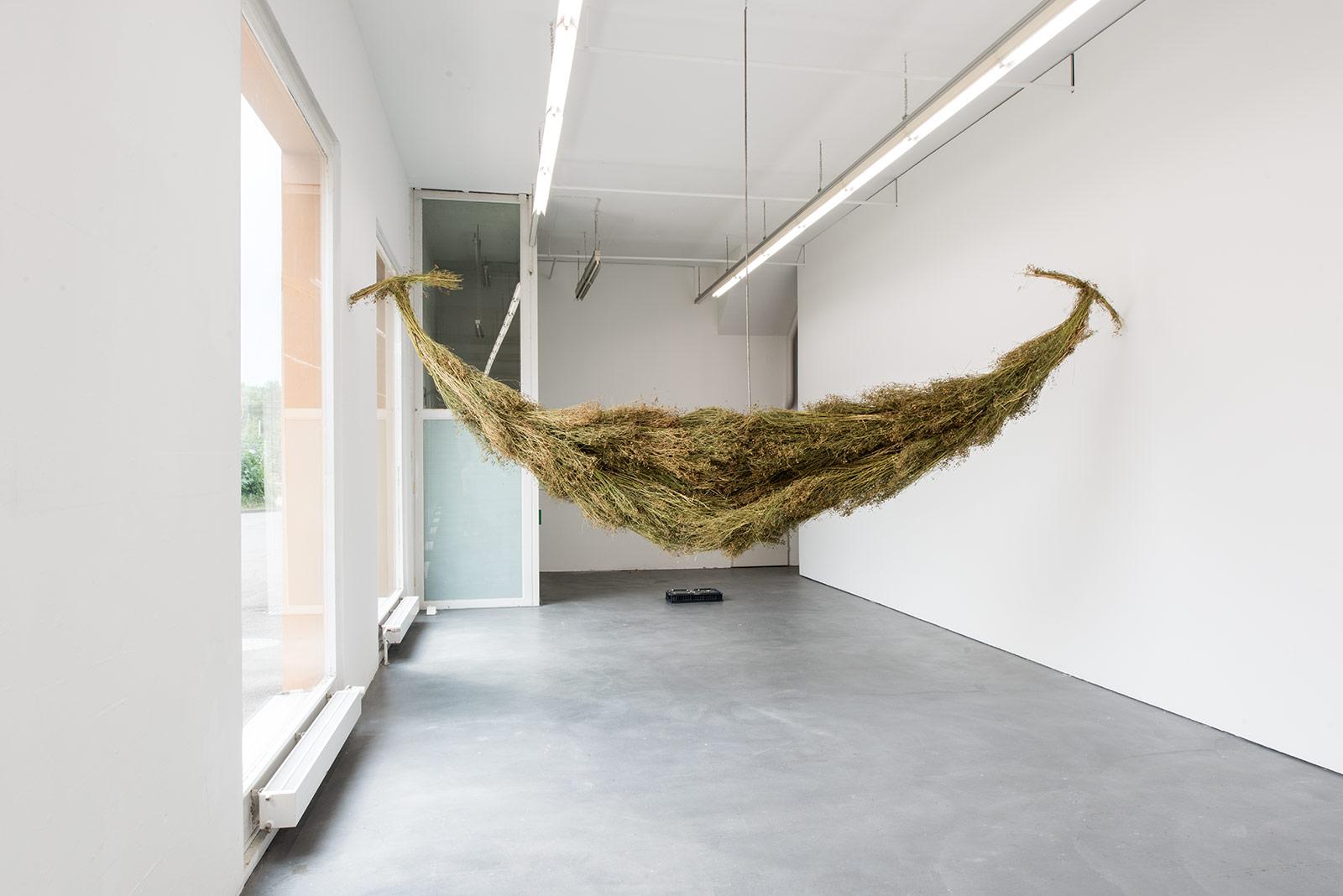 Gil Pellaton – Institut Kunst, Diplom 2017