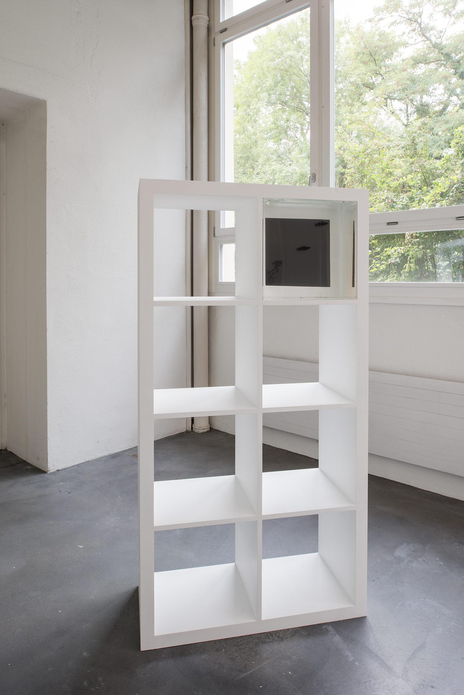 Othmar Farre – Institut Kunst, Diplom 2017