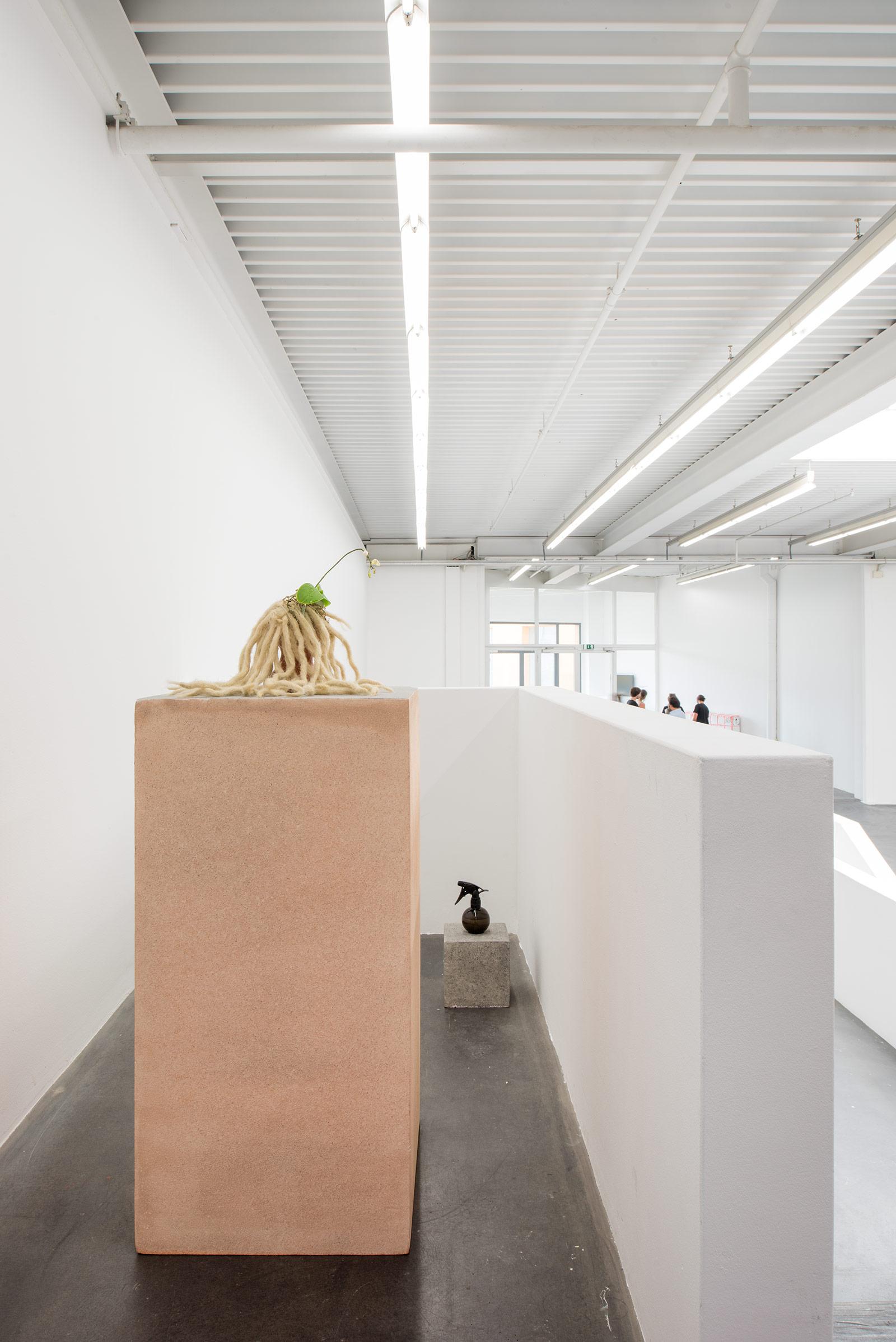 Raphael Loosli – Institut Kunst, Diplom 2017