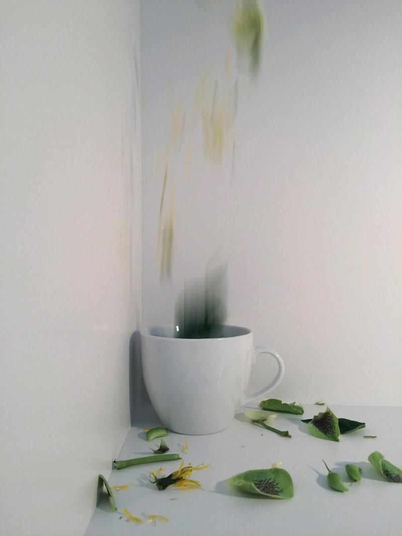 Damaris Thalmann – Fotografische Wirklichkeit